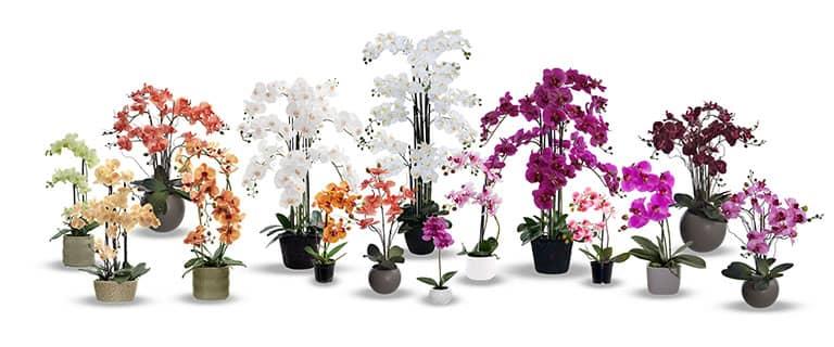 Kunstpflanzen Kunstgraser Hochwertige Kunstblumen