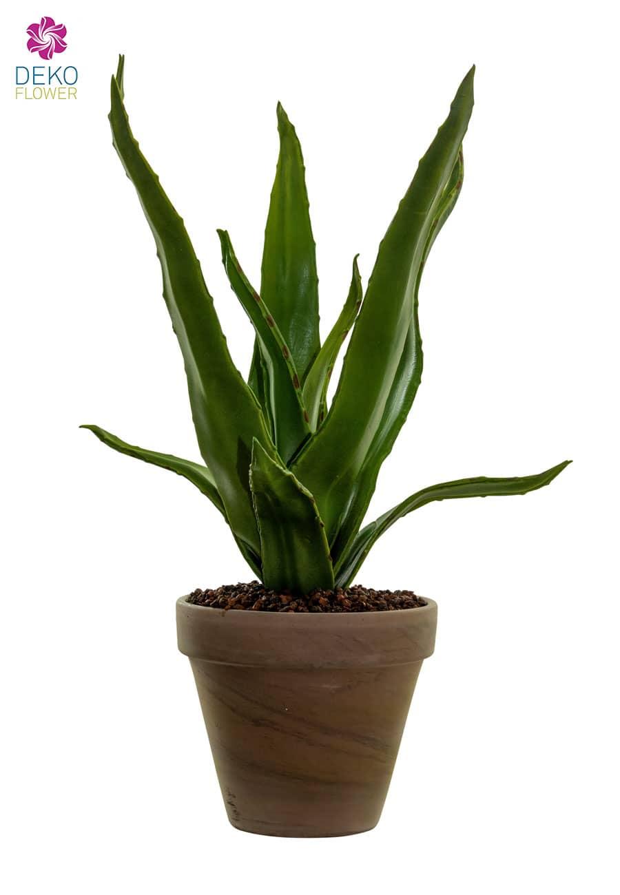 Aloe Vera Kunstpflanze 34 cm