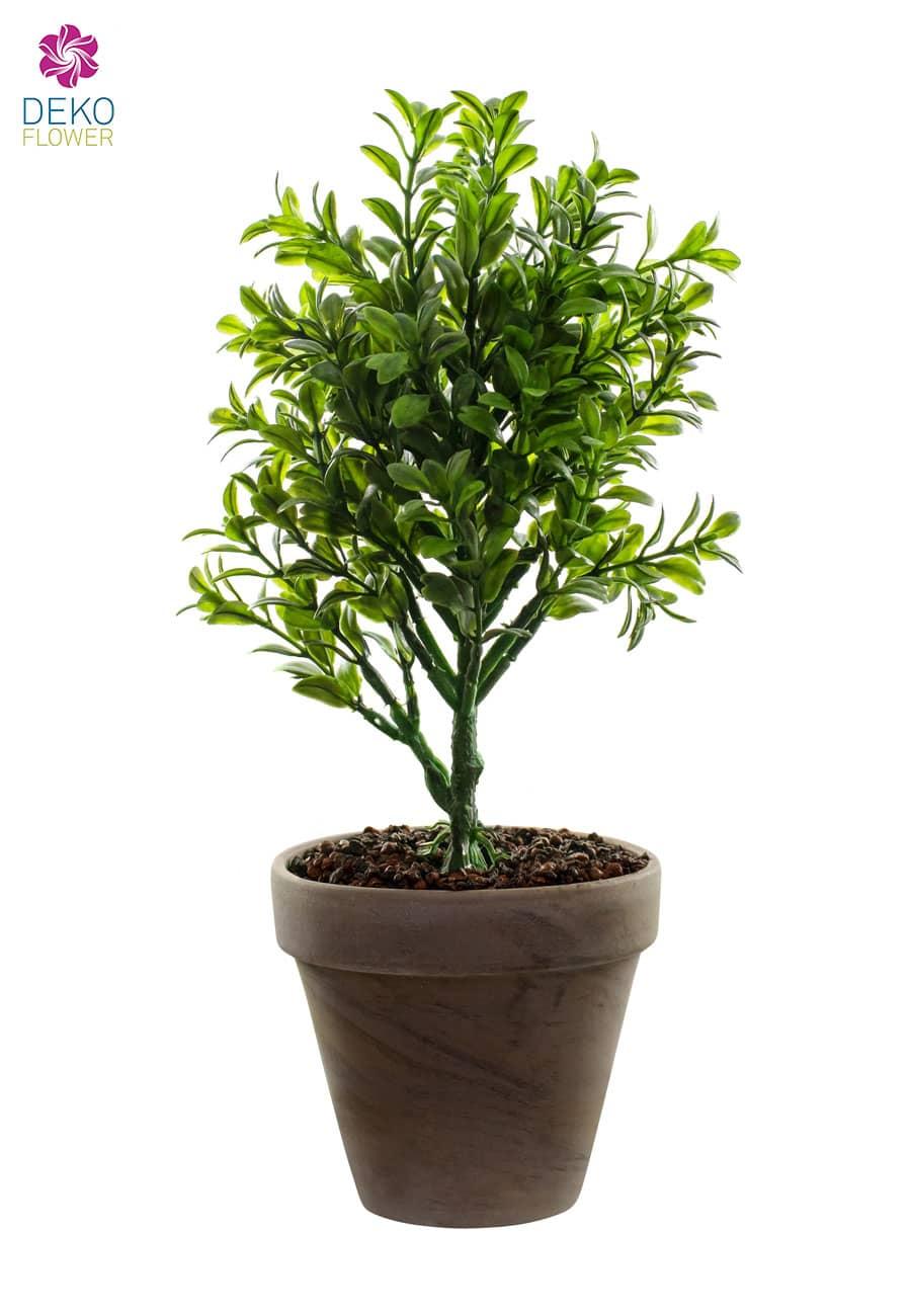 Buchsbaum Kunstpflanze 33 cm