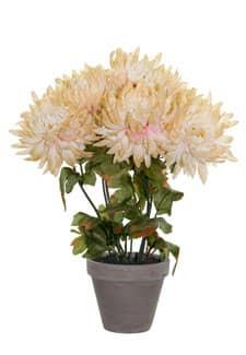 Künstlicher Chrysanthemen im Tontopf creme-gelb 34cm