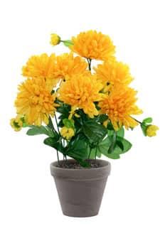 Künstlicher Chrysanthemen gelb im Tontopf 34cm