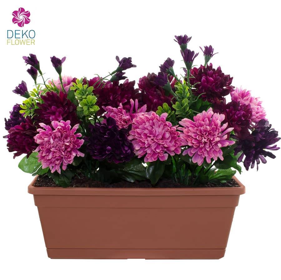 Chrysanthemen im Blumenkasten 31 cm pink