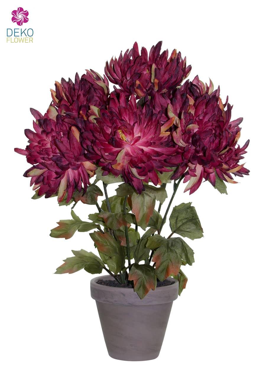 Künstliche Chrysanthemen im Topf weinrot 34 cm