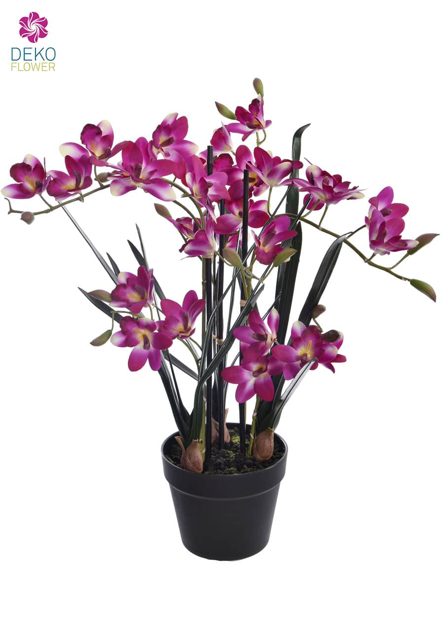 Cymbidium Orchidee »Real Touch« pink 66 cm