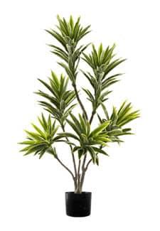 Dracaena Kunstbaum creme grün 125 cm