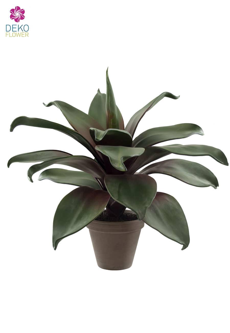Echeveria Kunstpflanze getopft 47 cm