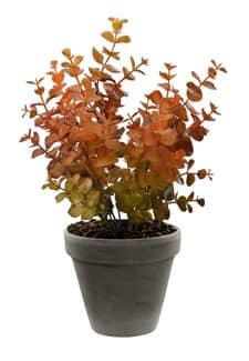 Eukalyptus Busch künstlich orange 31 cm
