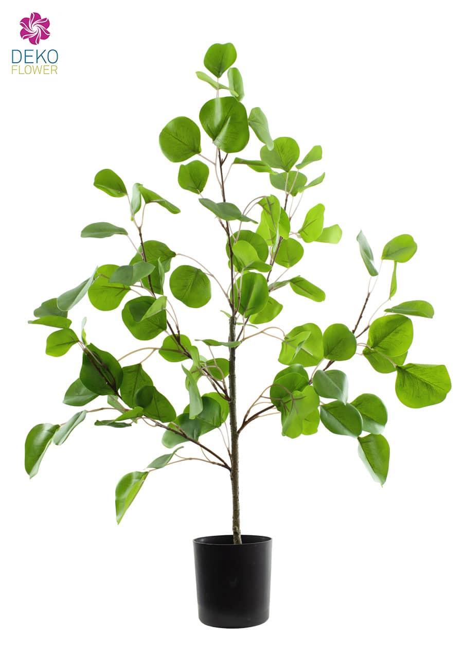 Eukalyptus Kunstpflanze grün 67 cm