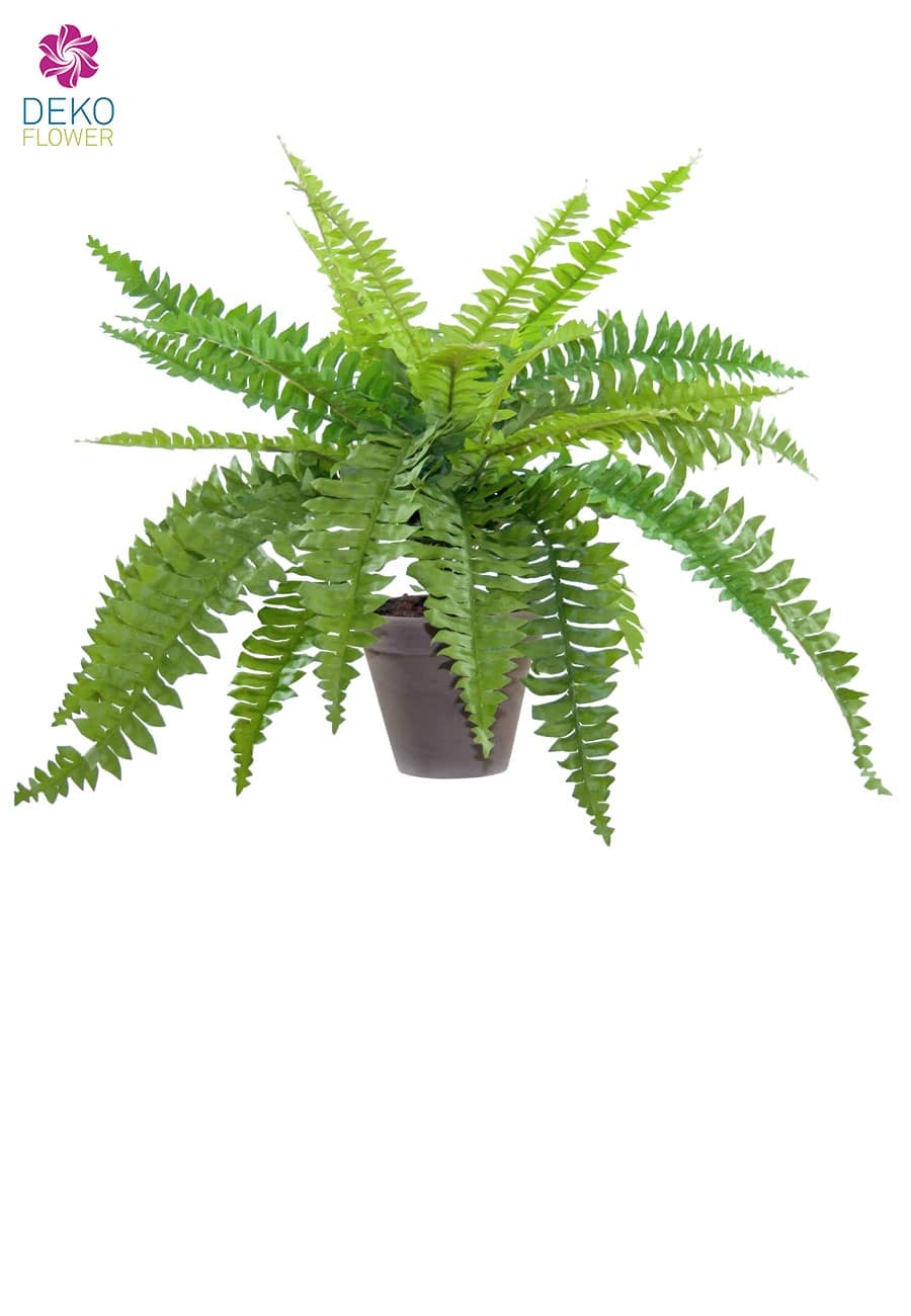 Farn Kunstpflanze 50 cm