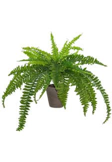 Farn Kunstpflanze 70 cm