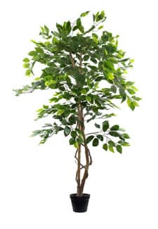 Ficus Kunstbaum grün 145 cm