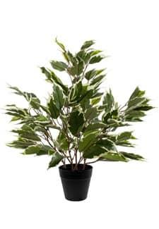Ficus Kunstpflanze mini grün weiß 42 cm