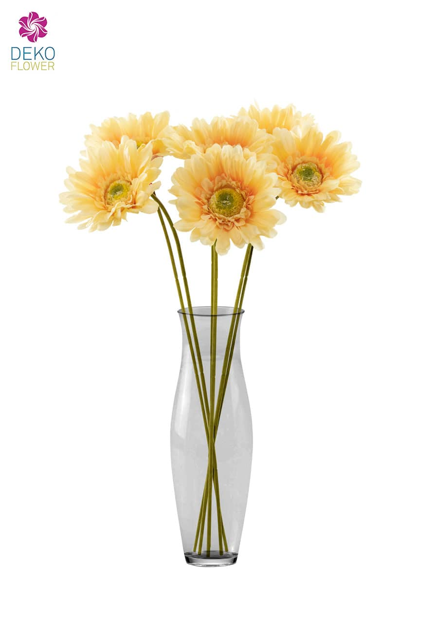 Gerbera Kunstblumen 56 cm apricot 6er Pack