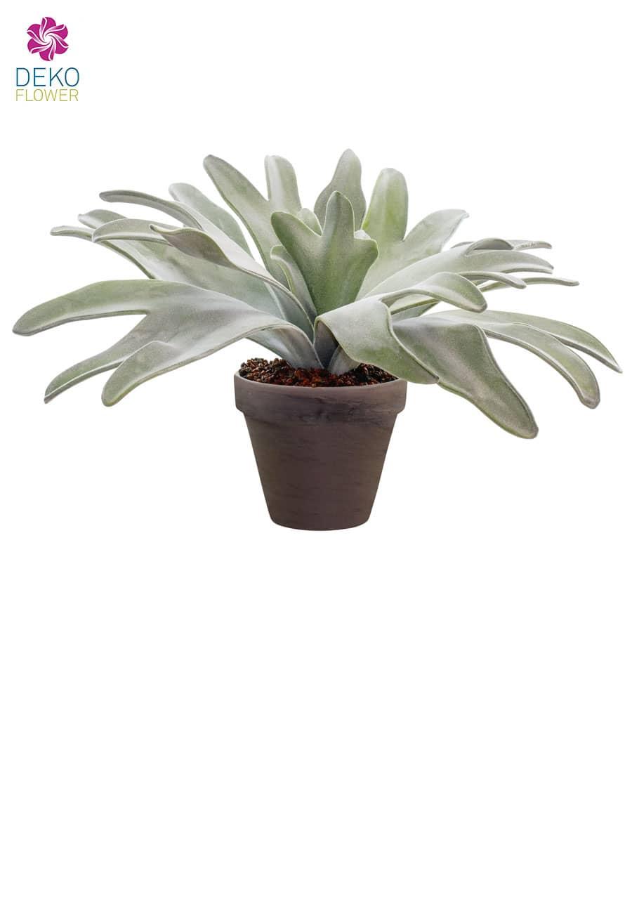 Geweihfarn Kunstpflanze 28 cm getopft