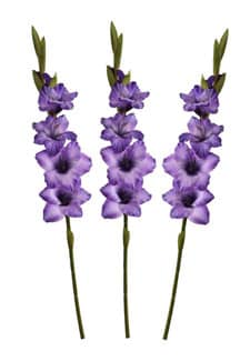 Gladiolen Kunstblumen violett 85 cm