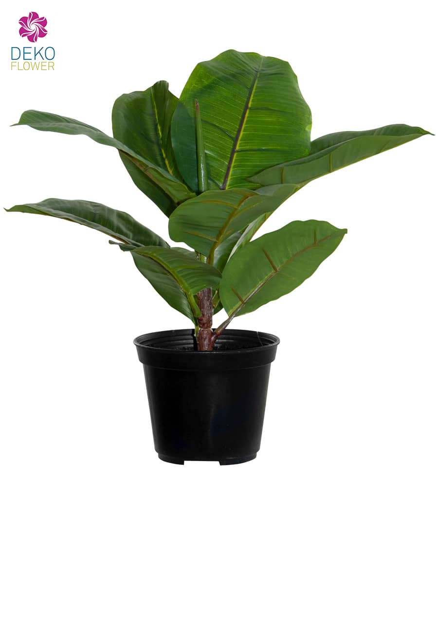 Gummibaum Kunstpflanze 29 cm
