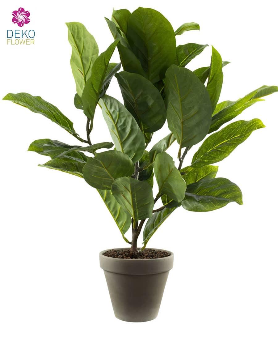 Gummibaum Kunstpflanze 58 cm grün