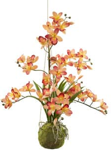 Hängende Cymbidium Orchidee orange 80 cm