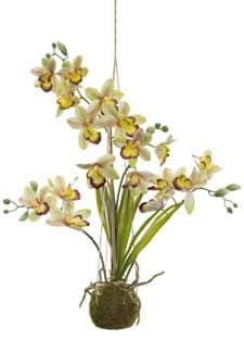 Hängende Orchidee Cymbidium grün 63 cm