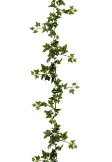 Holland Efeugirlande 180 cm creme grün