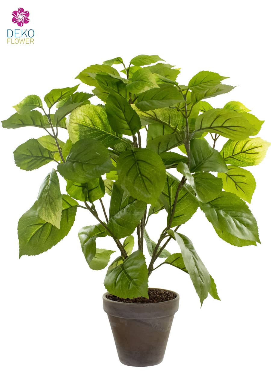 Hortensien Kunstpflanze grün 54 cm