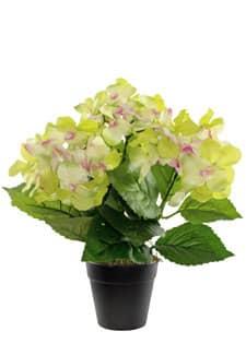 Hortensien Kunstpflanze im Topf 31 cm grün