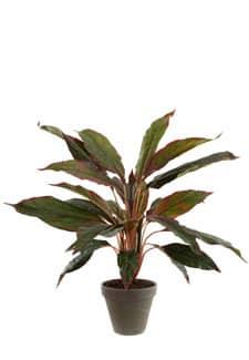 Keulenlilie Kunstpflanze 54 cm rot grün