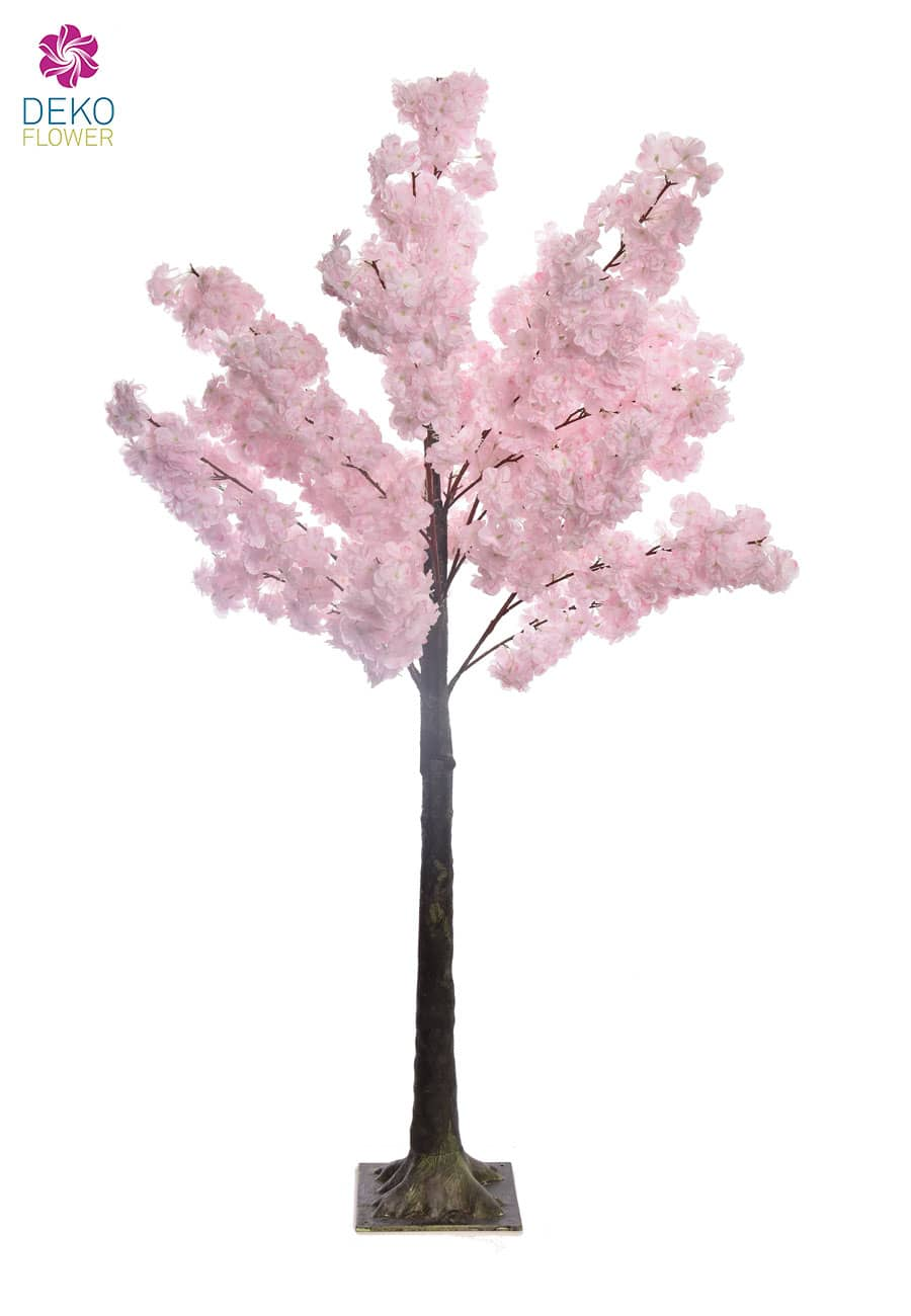 Kirschblütenbaum rosa 150 cm - 2. Wahl