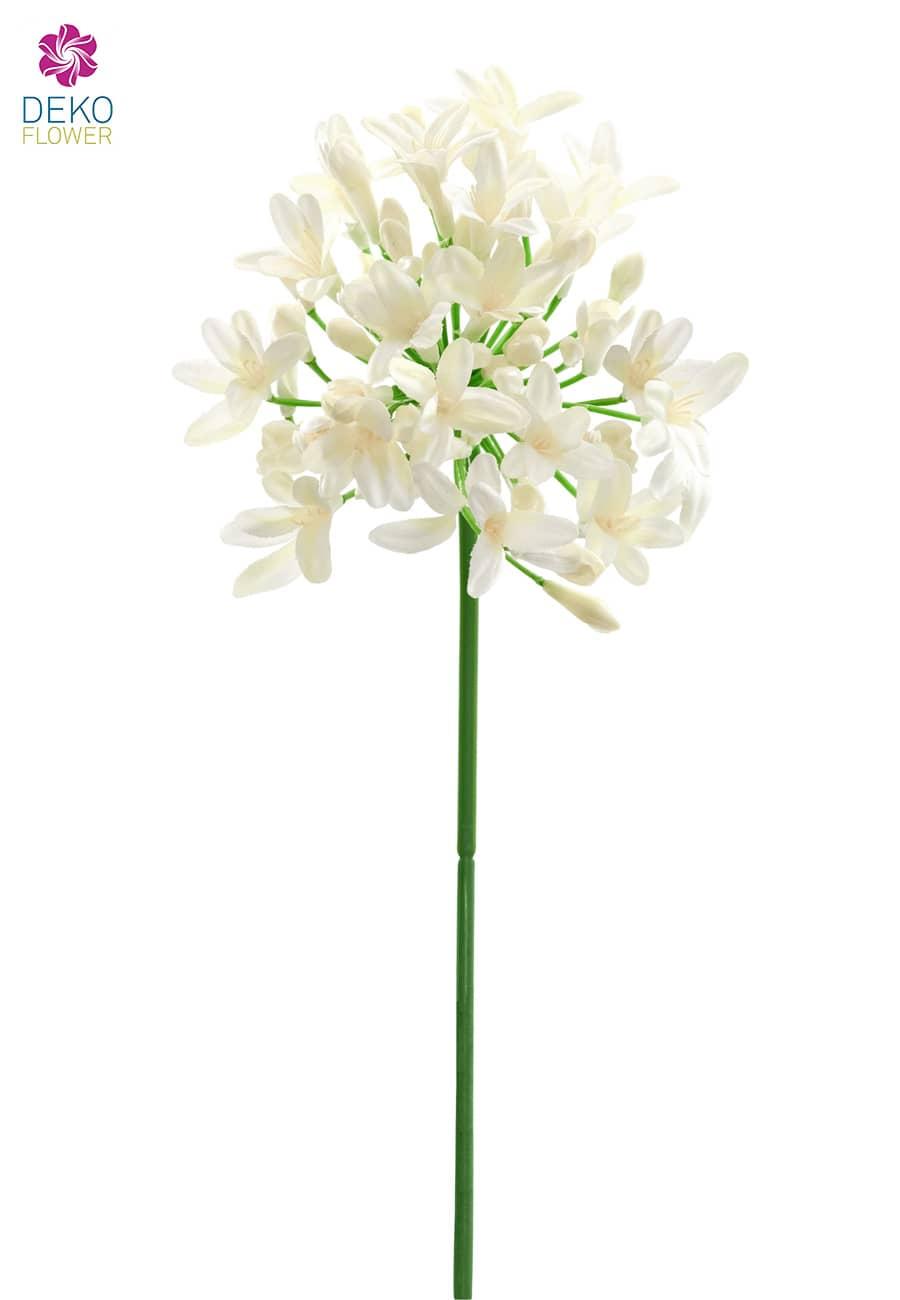 Künstliche Agapanthus Blume creme-weiß 74 cm 3er-Pack