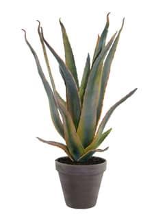 Aloe Kunstpflanze grün-gelb 50cm