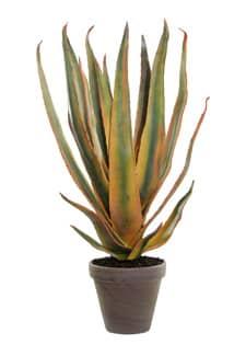 Künstliche Aloe-Pflanze grün-gelb 67cm