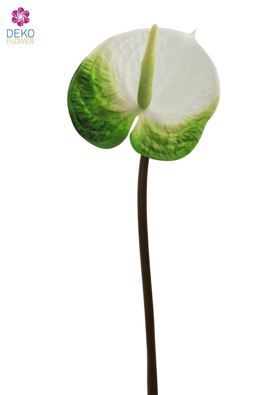 Künstliche Anthurien 67 cm weiß grün