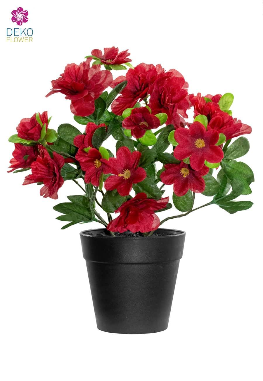 Künstliche Azaleen rot 25 cm