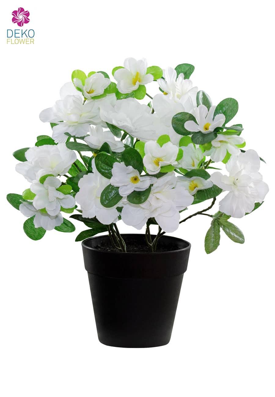 Künstliche Azaleen weiß 25 cm