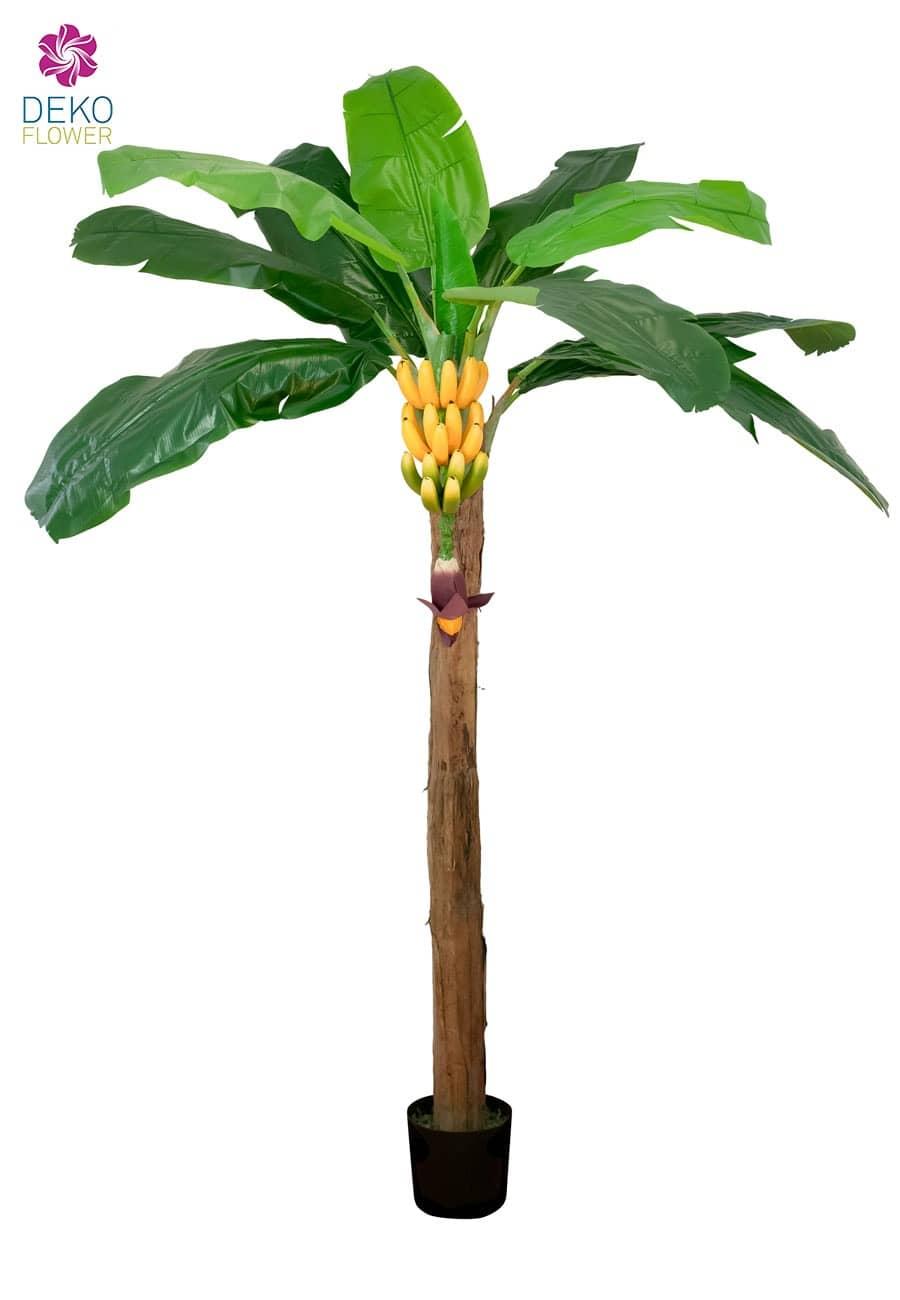 k nstliche bananenpalme mit bananenstaude ca 210cm. Black Bedroom Furniture Sets. Home Design Ideas