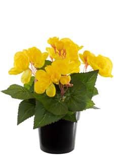 Künstliche Begonien Topfblumen gelb 22 cm