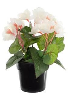 Künstliche Begonien Topfblumen weiß 22 cm
