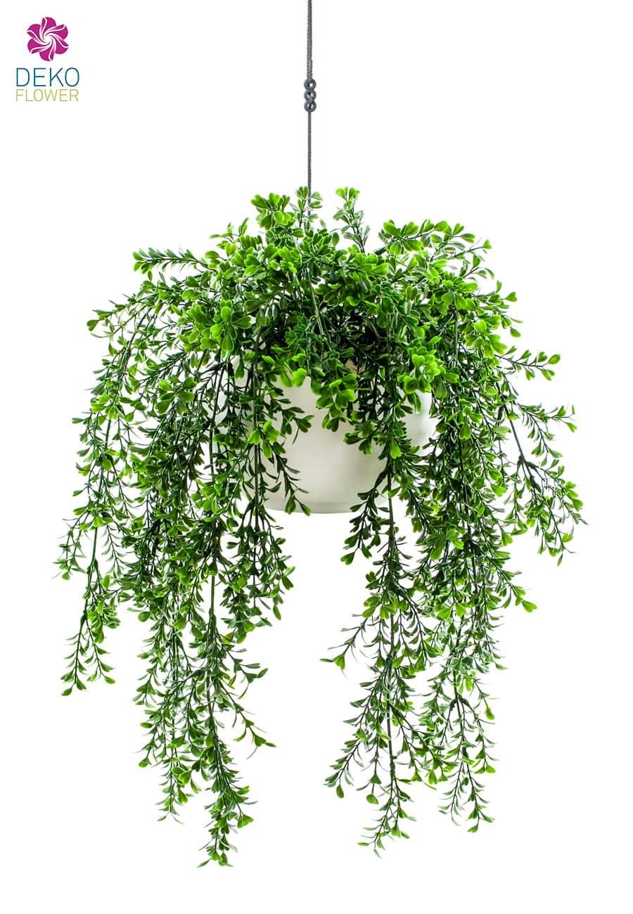 Künstliche Buchsbaumranken in Hängeampel 50 cm grün