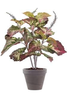 Künstliche Buntnessel Pflanze gelb pink 47 cm