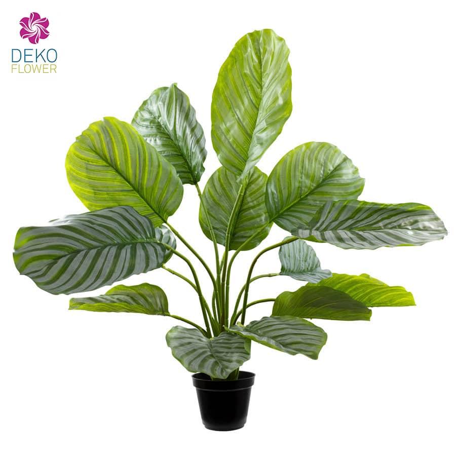 Künstliche Calathea Pflanze 68 cm