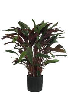 Künstliche Calathea-Pflanze rot 90cm