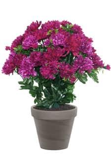 Künstlicher Chrysanthemen Busch weinrot-pink 43cm im Tontopf