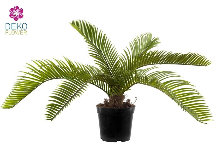 Künstliche Cycas-Palme 35 cm