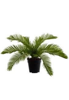 Künstliche Cycaspalme 40 cm