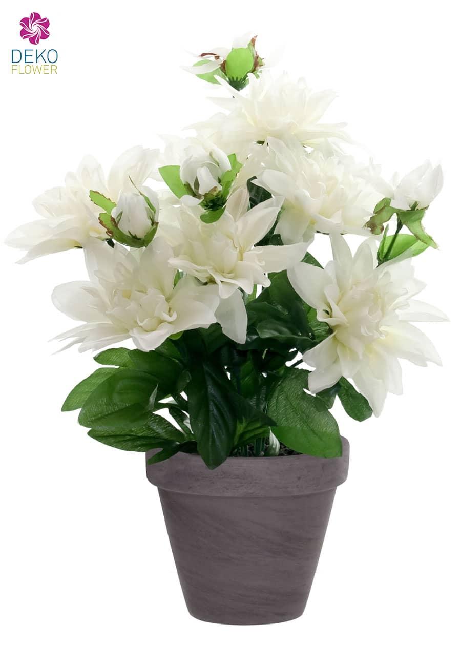 Künstliche Dahlien Blumen weiß 32 cm im Topf