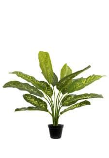 Künstliche Dieffenbachia grün gelb 65 cm