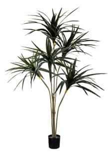Künstliche Dracaeana 150 cm