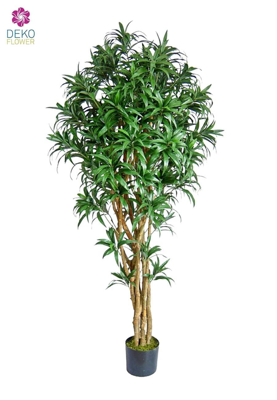 Künstlicher Dracaena Venecia Baum 180 cm