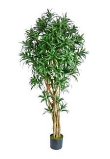 Künstlicher Baum Dracaena Venecia 210 cm
