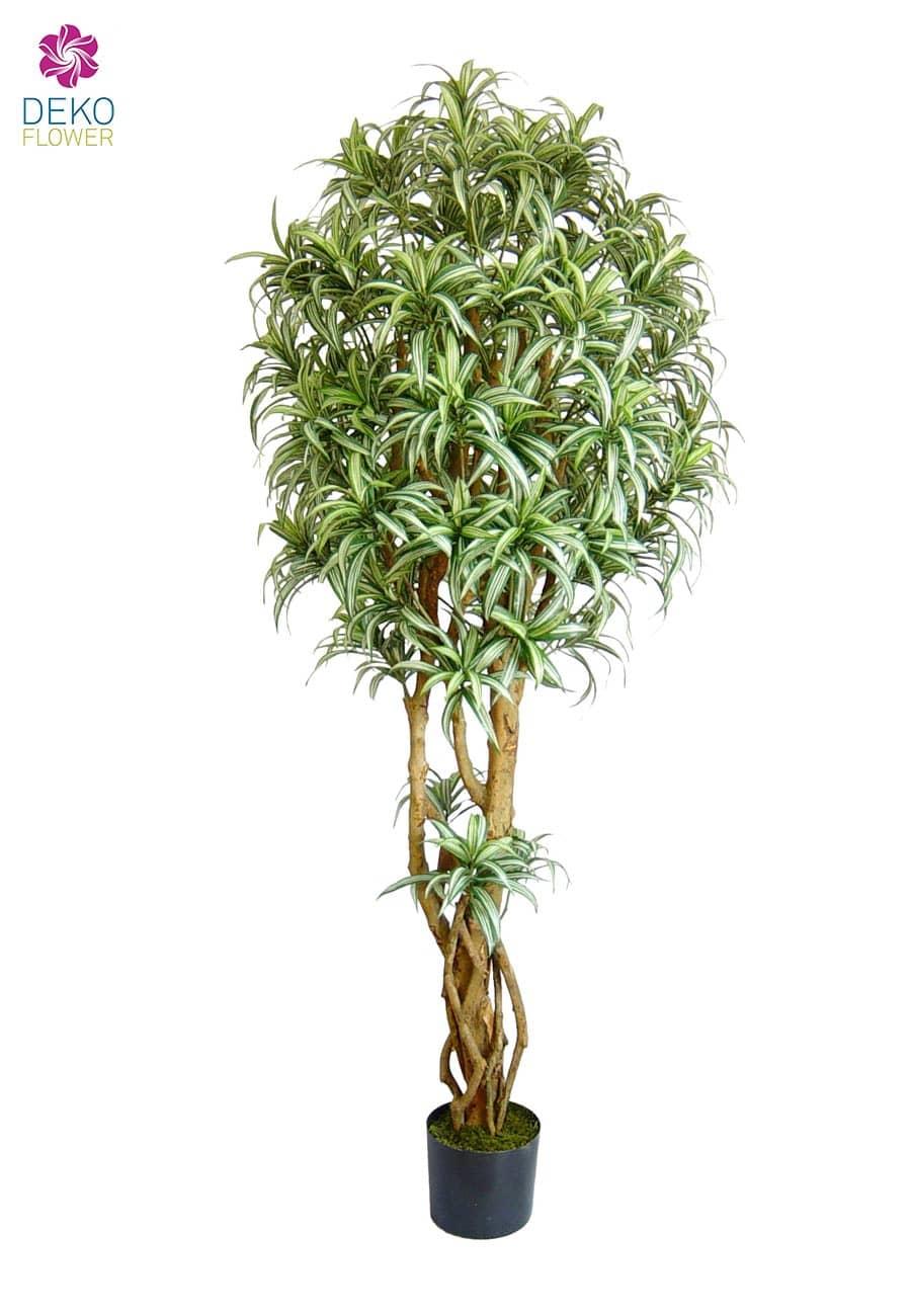 Künstlicher Baum Dracaena Warniki 180 cm